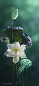 美輪さんに学ぶ「蓮の花は泥の中から一輪の花を咲かせる」